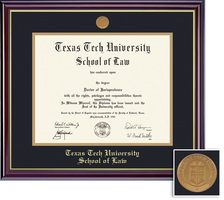 Framing Success Windsor Law (717Pres) Diploma, double mat cherry finish gold inner bevel