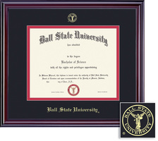 Framing Success Elite PhD Double Matted Diploma Frame in Gloss Cherry Finish