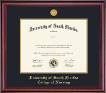 Framing Success Classic Medallion Double Matted Nursing Diploma Frame