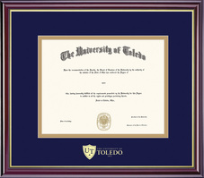 Framing Success Windsor Diploma Frame, Dbl Matted, Gold Trim. Masters, Doctorate, or Law