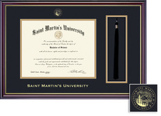 Framing Success Windsor Diploma Tassel Double Mat in high gloss cherry finish with gold inner bevel