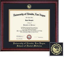 Framing Success Classic Dental Double Matted Diploma Frame