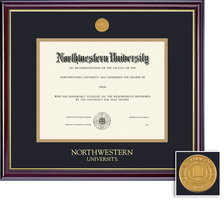 Framing Success Windsor Medical Medallion Double Matted Diploma Frame