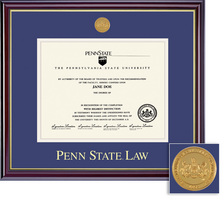 Framing Success Windsor Medallion Law Double Matted Diploma Frame