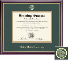 Framing Success Windsor BA (707 Present) Diploma Frame,Dbl Matted in gloss cherry finish, Gold Trim