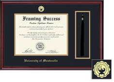 Framing Success Classic Double Matted Diploma Tassel Frame in a Burnished Cherry Finish
