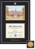Framing Success Prestige BAMA DiplomaLitho Frame Double Matted in Satin Black Finish, Gold Trim