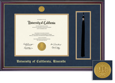 Framing Success Windsor Diploma Tassel Medallion Frame, Dbl Matted in Gloss Cherry Finish, Gold Trim
