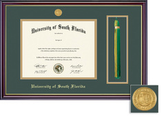 Framing Success Windsor Diploma & Tassel Frame in Gloss Cherry Finish, Gold Trim. Masters (Pre 09)