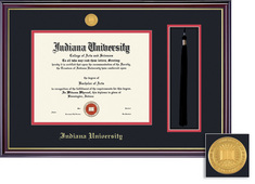 Framing Success Windsor Medallion DiplomaTassel Double Matted Diploma Frame