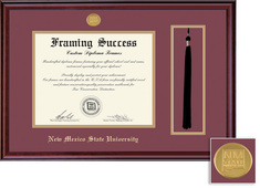 Framing Success Classic Tassel Medallion Matted Diploma Frame
