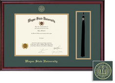 Framing Success Classic DiplomaTassel Double Matted Diploma Frame
