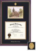 Framing Success Windsor Medallion DiplomaLitho Double Matted Diploma Frame