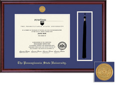 Framing Success Penn State Nittany Lions Classic Medallion Diploma And Tassel Frame