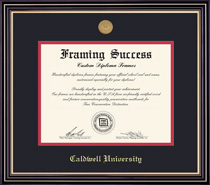 Framing Success Prestige BA Diploma Frame wMedallion, Dbl Matted in Satin Black Finish, Gold Trim
