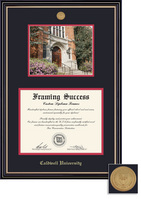 Framing Success Prestige PhD DiplomaPhoto Mdl Frame, Double Matted in Satin Black Finish, Gld Trim