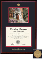 Framing Success Classic PhD DiplomaPhoto Mdl Frame, Double Matted in Burnished Cherry Finish