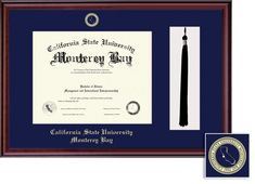 Framing Success Classic Diploma, Tassel Frame. Single Matted in Burnished Cherry Finish