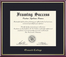 Framing Success Academic Diploma Frame, Single Mat in High Gloss Cherry Finish, Gold Inner Bevel