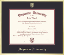 Framing Success Varsity Single Matted Diploma Frame with a Satin Gold Tone Metal