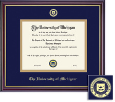 Framing Success Windsor Diploma Frame with Embossed Seal. PhD, Law, and Dentistry