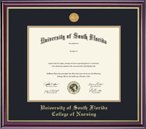 Framing Success Windsor Medallion Double Matted Nursing Diploma Frame