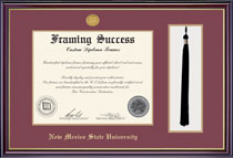 Windsor Tassel WMedallion Matted Diploma Frame