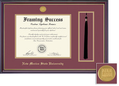 Framing Success Windsor Tassel with Medallion Matted Diploma Frame