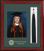 Framing Success Keepsake PhotoTassel Single Green Mat In Burnished Cherry Finish