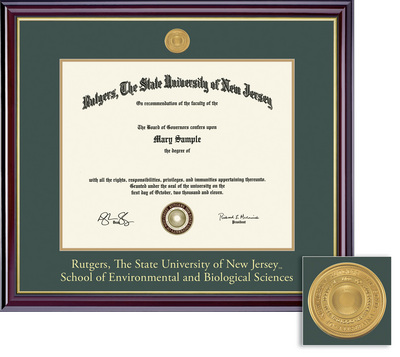 Framing Success Windsor Medallion 8.5x11 Double Diploma Frame Matted in High Gloss Cherry Finish