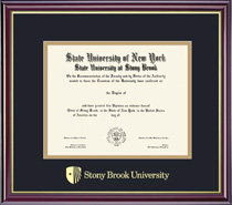 Windsor Double Matted Diploma Frame In Gloss Cherry Finish, Gold Trim