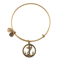 Alex and Ani Nautical Bracelet