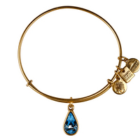 Alex and Ani Charity by Design, Living Water Bracelet