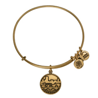Alex and Ani Boston II  Bracelet