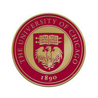 University of Chicago Brass Lapel Pin