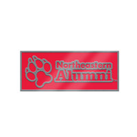 Northeastern Huskies Brass Lapel Pin