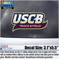 Track and Field Decal