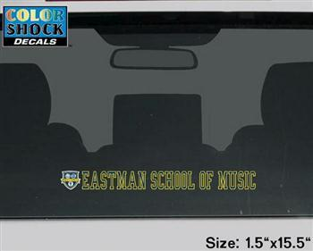Color Shock Strip Decal