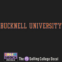 Bucknell Color Shock Strip Decal