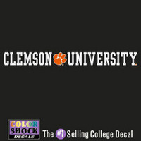 Clemson Tigers Color Shock Strip Decal