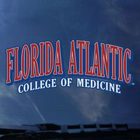 College of Medicine Color Shock Wordmark Decal