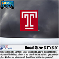Temple Color Shock Wordmark Decal