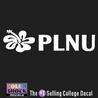 Color Shock School Name Decal