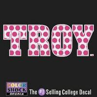 Troy University CDI Square Decal