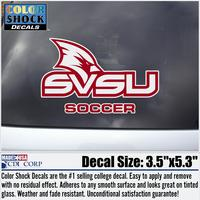 Color Shock Soccer Decal