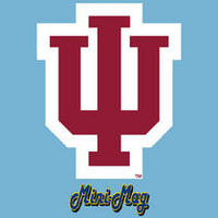Indiana Hoosiers Mini Car Magnet