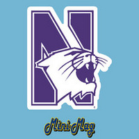 Northwestern Wildcats Mini Car Magnet