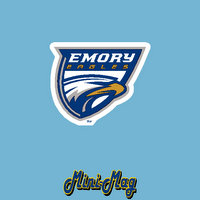 Emory Eagles CDI Mini Car Magnet