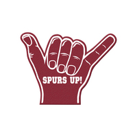 South Carolina Gamecocks Foam Finger