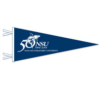 50th Anniversary Mini Logo Pennant Magnet from Collegiate Pacific